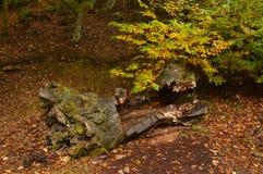 Torrt kastanjebrunt träd som ligger på jordningen med en Shape som ger mycket skräck på en molnig dag i Medulasen Allhelgonaafton royaltyfria foton
