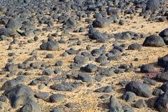 Torrt område med gamla lavastenar på kustlinjen Royaltyfri Fotografi