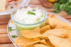 Torrtilla chiper och Guacamole Royaltyfria Bilder