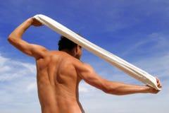 Torse mâle musculaire photos stock