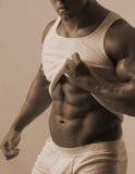 Torse mâle avec la chemise de té Images stock