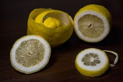 Torsion de peau de citron ou de citron sur un fond en bois de brun foncé Des tranches de citron sont coupées à travers Fin vers l Image stock