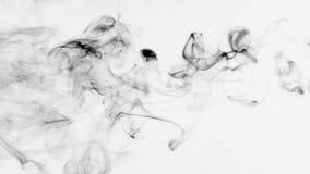 Torsiones del humo negro en un fondo blanco metrajes
