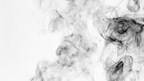Torsiones del humo negro en un fondo blanco almacen de video