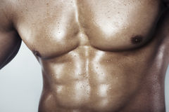 Torso. Close-up view on a muscular man's torso Royalty Free Stock Photo