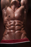 Torso with abs royalty free stock images