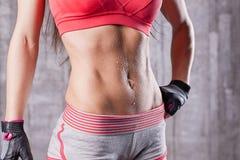 Torso of athlette girl in gym. Abdomen torso of athlette girl in gym Stock Image