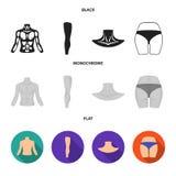 Torso, been, hals en billen De lichaamsdelen plaatsen inzamelingspictogrammen in de zwarte, vlakke, zwart-wit voorraad van het st royalty-vrije illustratie