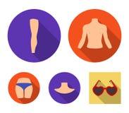 Torso, ben, hals och bakdelar Kroppsdelar ställde in samlingssymboler i plan rengöringsduk för illustration för materiel för stil royaltyfri illustrationer