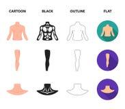 Torso, ben, hals och bakdelar Kroppsdelar ställde in samlingssymboler i tecknade filmen, svart, översikten, materiel för symbol f vektor illustrationer