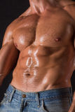 Torso of bodybuilder man Royalty Free Stock Photos
