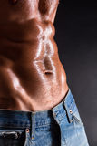 Torso of bodybuilder man Stock Photography