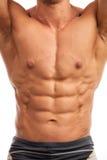 Torso of bodybuilder over white Stock Photos