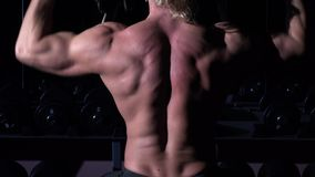 Torso of bodybuilder who is training in a gym with dumbbells, and up his hands stock footage