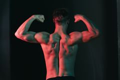 Torso concept. Man with naked torso back. Torso and arms muscle. Bodybuilder with muscular torso Stock Photo