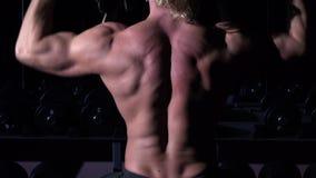 Torso des Bodybuilders, der in einer Turnhalle mit Dummköpfen ausbildet und up seine Hände stock footage