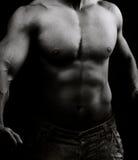 Torso do homem descamisado muscular na obscuridade Fotos de Stock Royalty Free