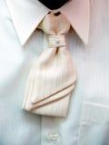 Torso do noivo com laço branco Foto de Stock Royalty Free