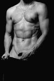 torso för packe sex Arkivbild