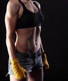 Torso femenino muscular Fotos de archivo libres de regalías