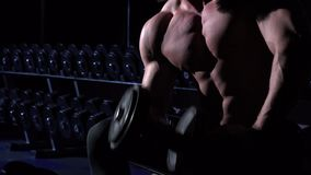 Torso of handsome athletic man in gym sitting and using dumbbell. Torso of handsome athletic man in gym is sitting and using dumbbell. He has gray trousers stock video footage