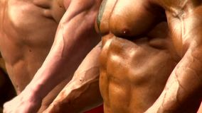 Torso male bodybuilders posing at a sporting event in bodybuilding stock footage