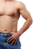 Torso of a man Royalty Free Stock Photos