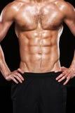 Torso maschio muscolare. Fotografie Stock Libere da Diritti