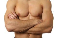 Torso maschio muscolare isolato su bianco immagini stock