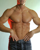 Torso masculino Fotografia de Stock Royalty Free