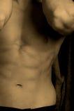 Torso masculino Imagens de Stock Royalty Free