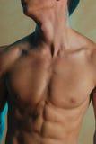 Torso masculino fotos de stock royalty free