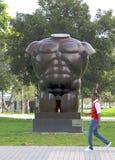 Torso masculino de Gary Nadal, parque de Bayfront, Miami fotos de archivo libres de regalías