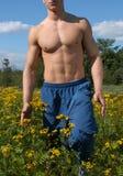Torso masculino muscular Imagens de Stock Royalty Free
