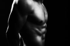 Torso masculino muscular Imágenes de archivo libres de regalías