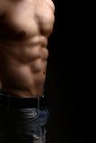 Torso masculino muscular Fotografía de archivo