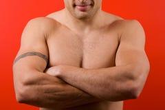 Torso masculino muscular isolado no fundo vermelho Fotos de Stock Royalty Free