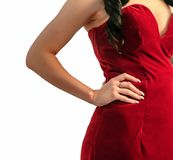 Torso of a model. Wearing a red dress Stock Photography