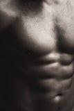 Torso mojado masculino muscular Imágenes de archivo libres de regalías