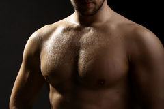Torso mojado masculino muscular Imagenes de archivo