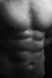 Torso mojado masculino muscular Foto de archivo