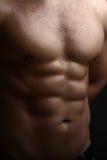 Torso mojado masculino muscular Fotografía de archivo libre de regalías
