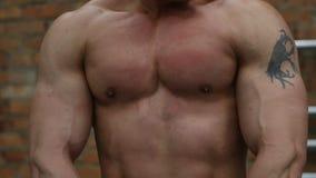 Torso muscolare e sexy del giovane video d archivio