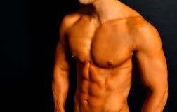Torso muscular fotos de stock royalty free