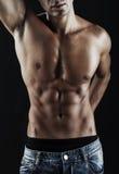 Torso muscular Fotografia de Stock