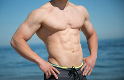 Torso muscular Fotografia de Stock Royalty Free