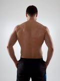 Torso muscular Fotos de Stock