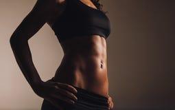 Torso muscular de la mujer joven Fotografía de archivo libre de regalías