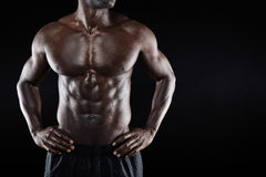 Torso of a muscular man with copyspace Royalty Free Stock Image