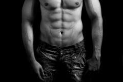 Torso of muscular man with sexy abdomen Stock Photos